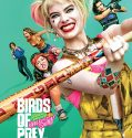 Birds of Prey (2020) Film Online Subtitrat