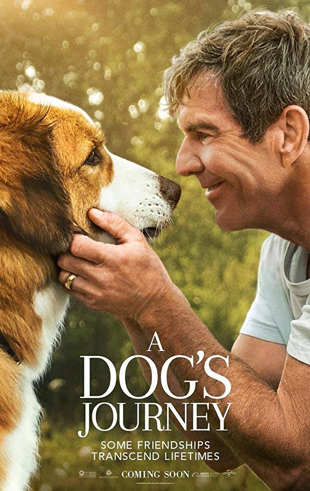 A Dog's Journey (2019) Online Subtitrat in Romana