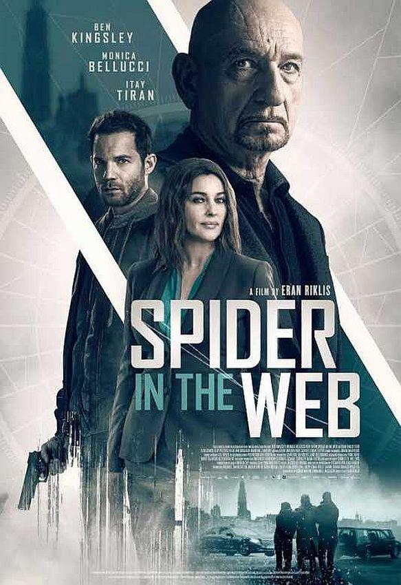 Spider in the Web (2019) Online Subtitrat in Romana