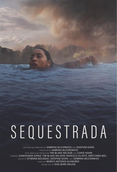 Sequestrada (2019) Online Subtitrat in Romana