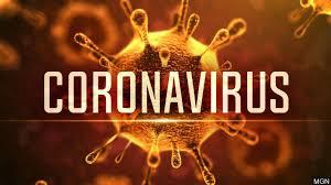 Coronavirus (2013) film online subtitrat