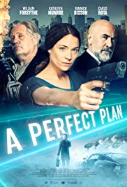 A Perfect Plan (2020) film online subtitrat